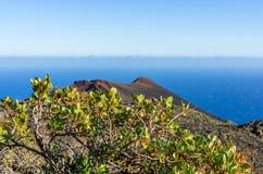 Vista di oceano nel sud di La Palma con la pianta nella priorità alta Immagini Stock Libere da Diritti