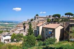 Vista di Orvieto. L'Umbria. L'Italia. Immagini Stock