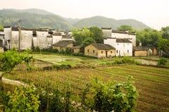 Vista di paesaggio del terreno coltivabile del sud della Cina Fotografia Stock