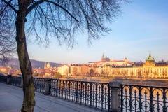 Vista di paesaggio urbano del castello di Praga con l'albero in priorità alta Fotografia Stock Libera da Diritti