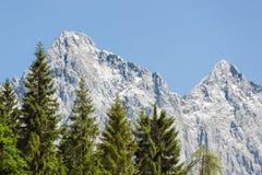 Vista di panorama alle montagne di Dachstein dell'austriaco Fotografie Stock