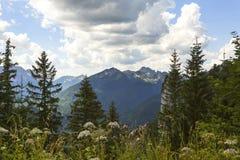 Vista di panorama dalle alpi bavaresi, Germania Immagini Stock Libere da Diritti