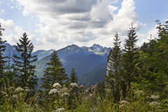 Vista di panorama dalle alpi bavaresi, Germania Fotografie Stock Libere da Diritti
