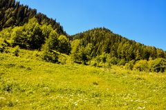 Vista di panorama del fondo dei picchi delle alpi Immagini Stock Libere da Diritti
