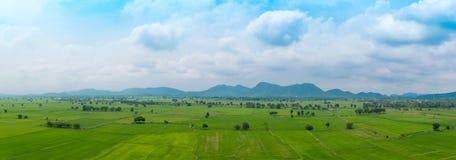 Vista di panorama del giacimento del riso in Kanchanaburi Tailandia Immagini Stock Libere da Diritti