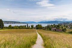 Vista di panorama del lago zurich e delle alpi Fotografie Stock Libere da Diritti