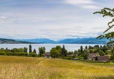 Vista di panorama del lago zurich e delle alpi Immagine Stock Libera da Diritti