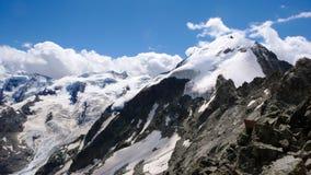 Vista di panorama del paesaggio della montagna con Piz Tschierva nelle alpi svizzere un bello giorno di estate Immagini Stock