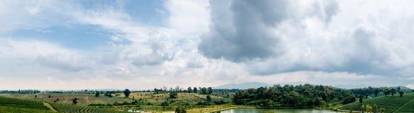 Vista di panorama del paesaggio del Nord della Tailandia Fotografia Stock