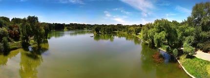 Vista di panorama del parco della città in estate e sole caldo. fotografia stock libera da diritti