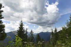 Vista di panorama delle alpi bavaresi, Germania Immagini Stock