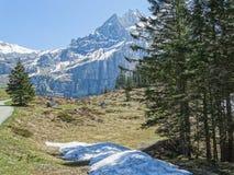 Vista di panorama delle alpi su un percorso d'escursione vicino a Kandersteg Immagine Stock Libera da Diritti