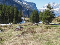 Vista di panorama delle alpi su un percorso d'escursione vicino a Kandersteg Immagini Stock Libere da Diritti