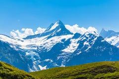 Vista di panorama di Schreckhorn, Fiescherwand Immagini Stock Libere da Diritti