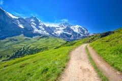 Vista di panorama a Grindelwald da Mannlichen Fotografie Stock Libere da Diritti