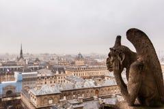 Parigi nel giorno nuvoloso dalla cima della cattedrale di Notre Dame Immagini Stock Libere da Diritti