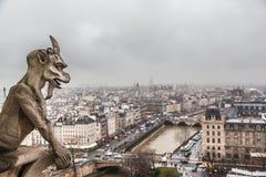 Parigi nel giorno nuvoloso dalla cima della cattedrale di Notre Dame Immagine Stock Libera da Diritti