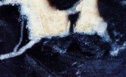 Vista di pietra di macro del modello di struttura del minerale dolomitico Bello fondo della gemma del carbonato di calcio dell'es Fotografia Stock