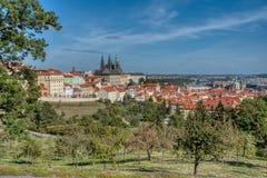 Vista di Praga dalla collina di Petrin immagini stock libere da diritti