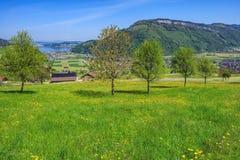 Vista di primavera dal Mt Stanserhorn in Svizzera Immagine Stock Libera da Diritti