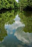 Vista di primavera del fiume di Roanoke Fotografia Stock