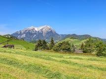 Vista di primavera nel Canton Nidvaldo con il Mt Pilatus nei precedenti Fotografia Stock