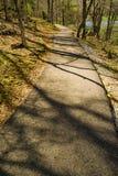 Vista di primavera di un percorso di camminata accessibile di handicap fotografie stock