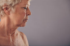 Vista di profilo del fronte senior della donna Fotografia Stock