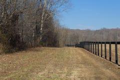 Vista di prospettiva di recinzione nera da un treeline, inverno fotografia stock
