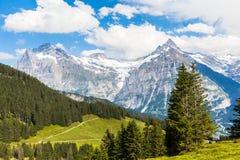 Vista di Schreckhorn, alpi svizzere Fotografie Stock Libere da Diritti
