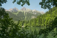 Vista di Springl del lago Tovel, Italia Fotografia Stock Libera da Diritti
