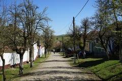 Vista di srteet cobbled del villaggio di Viscri di Transilvania immagine stock libera da diritti
