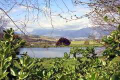 Vista di Stellenbosch fotografie stock libere da diritti