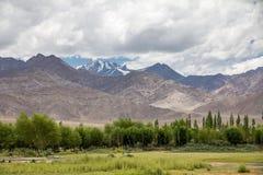 Vista di Stok Kangri dal terreno alluvionale di Indus del fiume, Thiksay Fotografie Stock Libere da Diritti