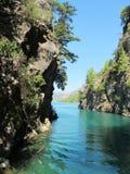 Vista di stordimento sopra il canyon verde fotografia stock