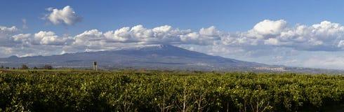 Vista di sud-ovest di Etna Fotografia Stock