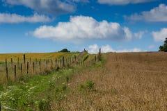 Vista di terreno coltivabile BRITANNICO Immagini Stock Libere da Diritti