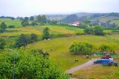 Vista di terreno coltivabile in Santillana Del Mar, Cantabria, Spagna Verde fotografia stock