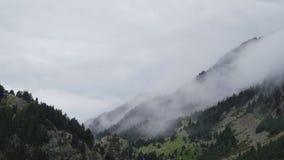 Vista di Timelapse di foschia da parte a parte nell'alta foresta della montagna di Pirenei che copre gli alberi video d archivio