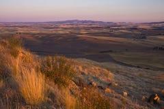 Vista di tramonto dalla collina di Steptoe, valle di Palouse, Washingt orientale Fotografie Stock