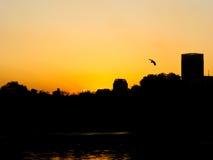 Vista di tramonto a Shanghai Fotografia Stock