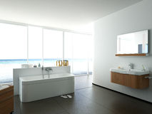 Vista di un bagno spazioso ed elegante in Immagine Stock