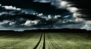 Vista di un campo con un cielo drammatico Immagine Stock