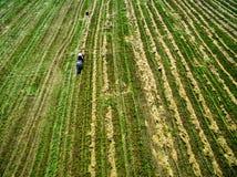Vista di un campo del paese con il trattore Immagini Stock