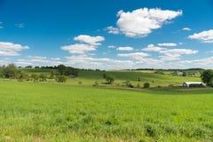 Vista di un campo nel lato del paese di Illinois immagine stock libera da diritti