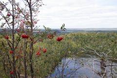 Vista di un lago Fotografia Stock