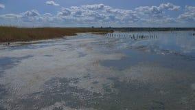 Vista di un lago paludoso nella regione di Odessa di Ucraina Ciò è a Immagini Stock Libere da Diritti