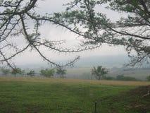 Vista di un paesaggio fotografia stock