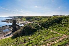 Vista di un percorso lungo una linea costiera in Scozia Fotografia Stock