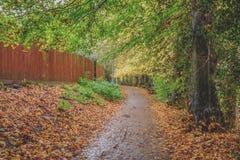 Vista di un sentiero per pedoni pubblico vuoto durante l'autunno, veduta accanto ad un recinto lungo del legname fuori di una cit fotografia stock